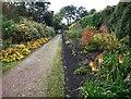 SK3199 : The gardens Wortley Hall by Steve  Fareham
