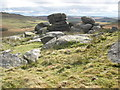 SX1481 : Granite boulders, on Showery Tor by Roger Cornfoot