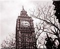 TQ3079 : Big Ben Clock Tower by Adrian Cable