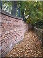 SE3221 : Wavy wall : Week 43