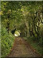 ST5738 : Worthy Lane by Derek Harper