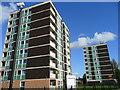 SJ9003 : High-rise housing, Chetton Green by Jonathan Billinger