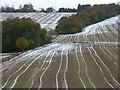 SU7996 : Farmland, Radnage by Andrew Smith