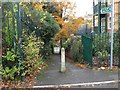 SZ0891 : Bournemouth: footpath B07 to Bourne Avenue by Chris Downer
