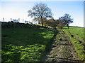 SE2843 : Ebor Way near Bank Side Farm by Chris Heaton