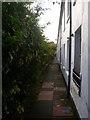 TQ3104 : Trafalgar Terrace by Simon Carey