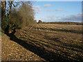 TL6455 : Stubble field by Hugh Venables
