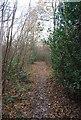 TQ6038 : High Weald Way through High Wood by N Chadwick
