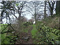 SE0942 : On Bury Lane by Chris Heaton