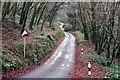 SX2158 : Steep hill by roger geach