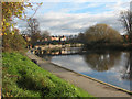 SJ4913 : River Severn above the weir at Shrewsbury by Stephen Craven