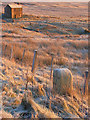 NY6542 : Milestone and cottage, the A686 below Hartside : Week 48