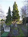 TQ2993 : Gravestones, Cemetery, Waterfall Road, London N14 by Christine Matthews