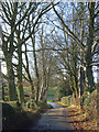 SP9202 : Lane at Pednor by Andrew Smith