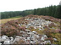 NS4581 : The Lang Cairn: view from western end by Lairich Rig