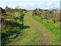 SX2384 : Track onto moorland by Jonathan Billinger