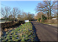 TL2984 : Hollow Lane by David Dearden