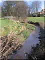SP0280 : Merritt's Brook, Manor Farm Park by Roy Hughes