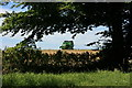SX1662 : Combine harvester near Braddock Church by Adrian Platt