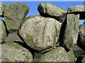 J3422 : Dry Stone Wall near Carrick Little : Week 4