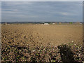 TL5083 : Ploughed field by Hugh Venables