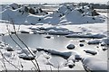 SU5181 : Frozen field : Week 6