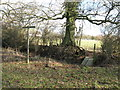 TQ1319 : Bridleway and footpath junction by Dave Spicer