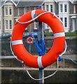 J5082 : Lifebuoys, Bangor : Week 6