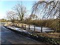 TL1391 : Morborne village pond by Michael Trolove