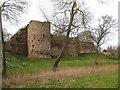SO5924 : Winter view of Wilton Castle by Pauline E