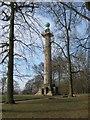 SP9713 : The Bridgewater Monument, Ashridge by Chris Reynolds