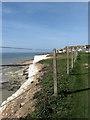 TQ3702 : Cliff Top Walk by Simon Carey