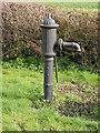 TL5462 : Long Meadow village pump by Keith Edkins