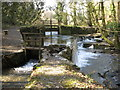 SX4168 : Cotehele Mill, Weir by Brian