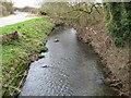 SU8671 : The Cut at Bott Bridge by Nigel Cox