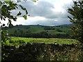 NY7766 : Rough pasture near Vindolanda by Iain Russell