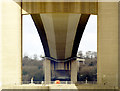 TA0224 : The Humber Bridge's Bottom by Andy Beecroft