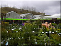 SD9321 : Gordon Rigg (Nurseries) Ltd. Calderbank Nurseries, Rochdale Road, Walsden by robert wade