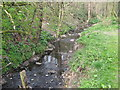 SO9978 : River Rea Just before it Passes Under Rubery Lane. by Roy Hughes