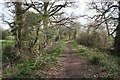 SJ4547 : Bridleway near Chorlton Lane by Dave Dunford