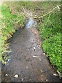 SP0379 : River Rea From Wychall Road Bridge by Roy Hughes