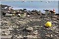 SW8238 : Mooring Sinkers at Loe Beach by Graham Loveland