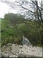 SO5893 : River Corve - downstream of bridge at Brockton by John M