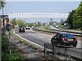 TL1653 : Tempsford pedestrian bridge by Michael Trolove