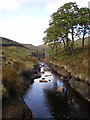 SD9233 : Main feeder stream for Widdop Reservoir by Alexander P Kapp