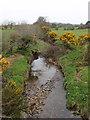 S9610 : Stream near Barnwell's Cross Roads by David Hawgood