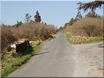 S9718 : Road junction on Forth Mountain by David Hawgood