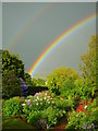 SO6424 : Rainbow's End x 2 : Week 20