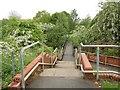 SE3606 : Steps down to the bridge crossing the River Dearne by Steve  Fareham