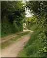 SW7345 : Byway, Leigham by Derek Harper